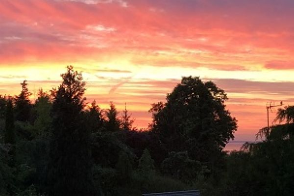 sunset-15F2BAFBC-8484-B520-F7D6-9E7B70D02B00.jpg